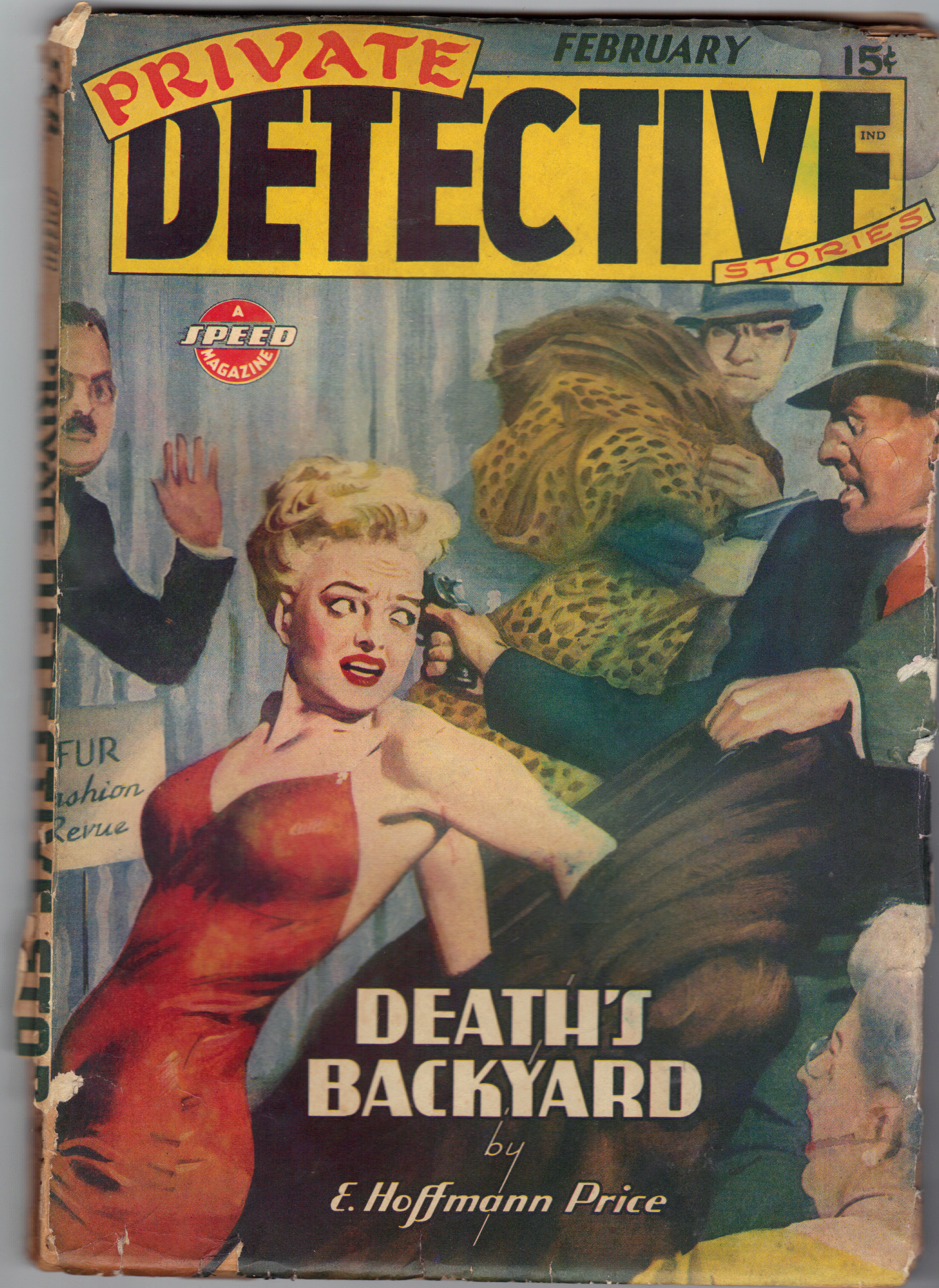 Image for PRIVATE DETECTIVE Stories