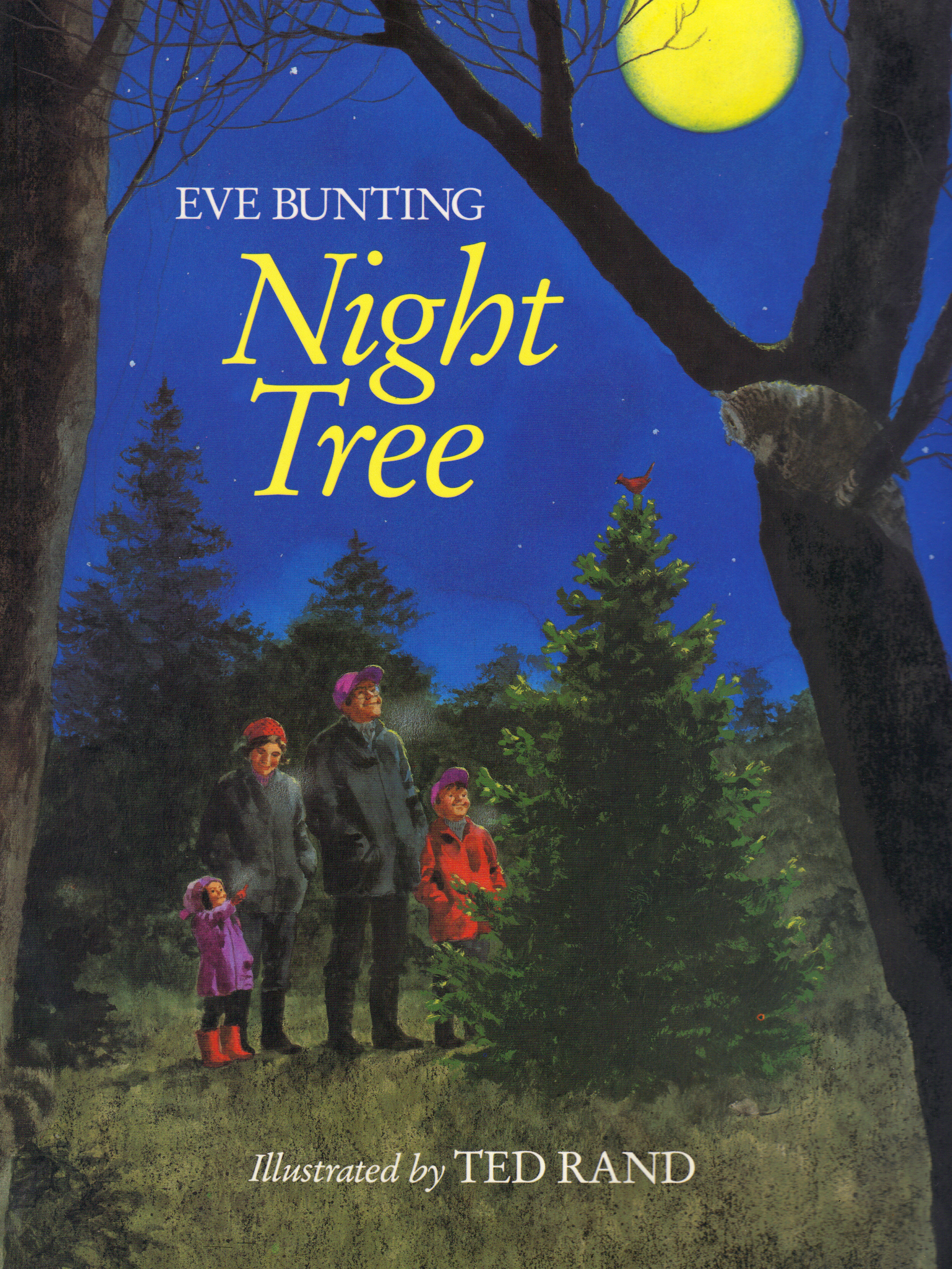 Image for NIGHT TREE
