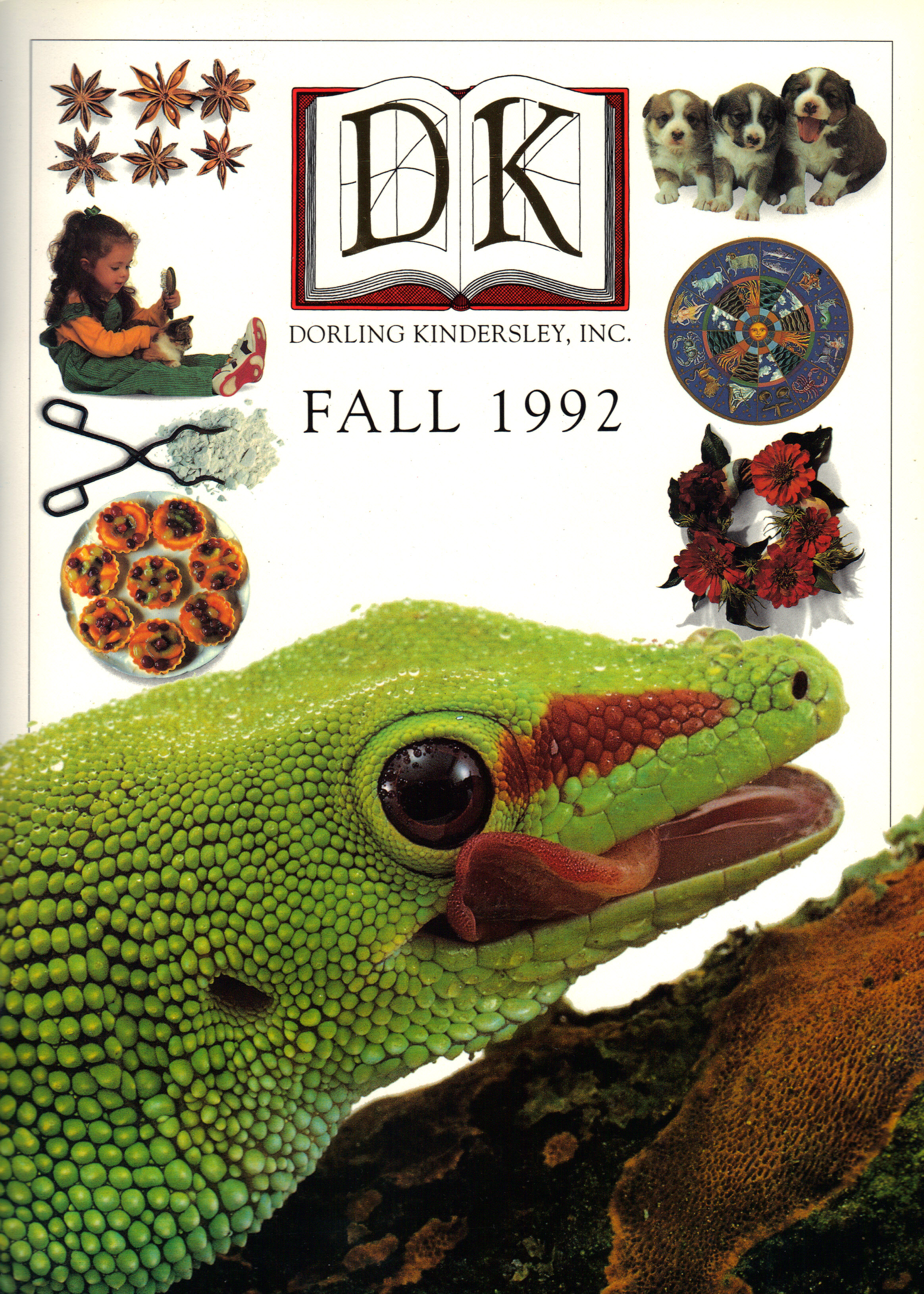 Image for DK FALL 1992