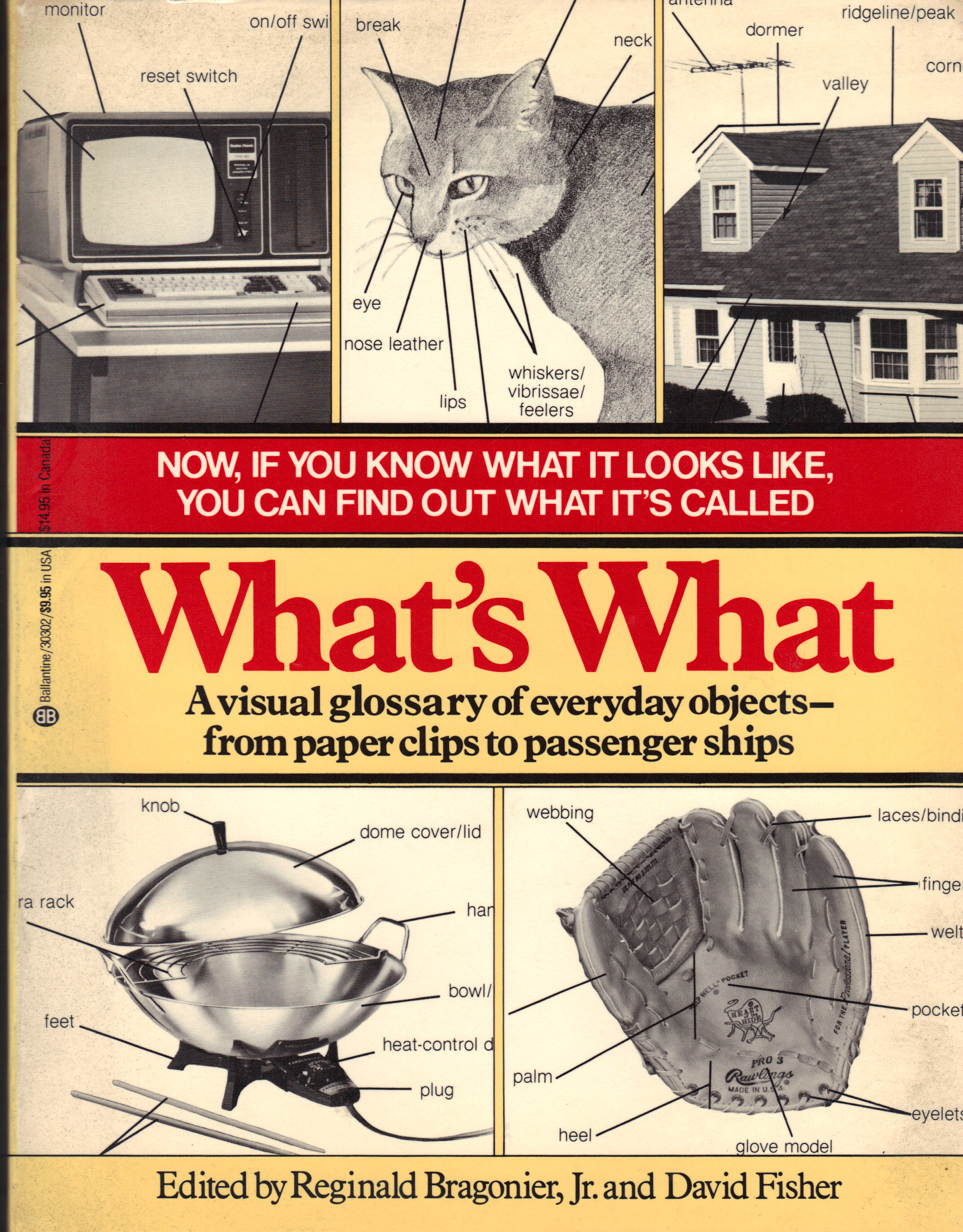 Image for WHAT'S WHAT ~ A Visual Glossary of Everyday Objects - from Paper Clips to Passenger Ships