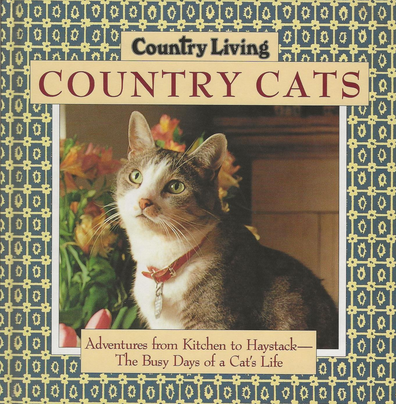 Image for COUNTRY CATS ~ Adventures from Kitchen to Haystack ~ The Busy Days of a Cat's Life